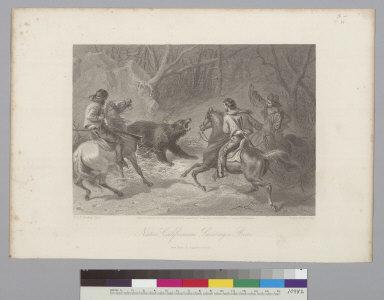 Native Californians lassoing a bear