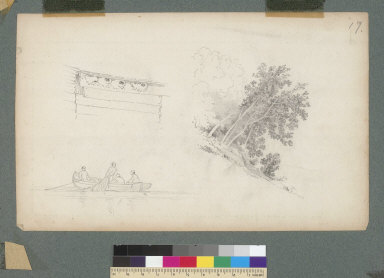 [Three drawings: nests under roof boards, fishing dory, and trees]
