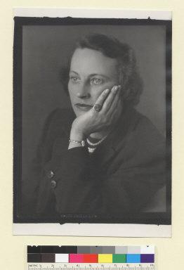 Petrel Gale