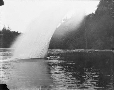 Saw log diving, Caspar Mill, Mendocino County, California. [transparency]