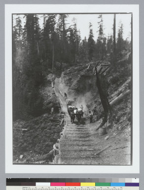 Bullteam hauling logs, Navarro, Mendocino County, California. [photographic print]