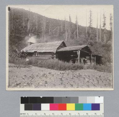 Cabin, Idaho trip. [photographic print]