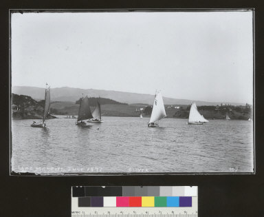 Boats, Lake Merritt, Oakland. [photographic print]