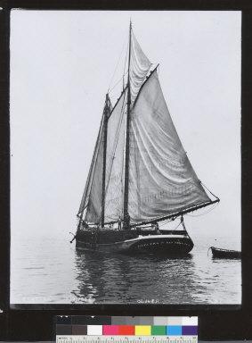 Electra (schooner) becalmed. [photographic print]