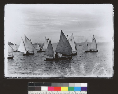 Sailing canoes off Sausalito [photographic print]