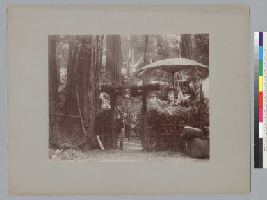 Man standing under Asian style entrance gate, Bohemian Grove. [photographic print]
