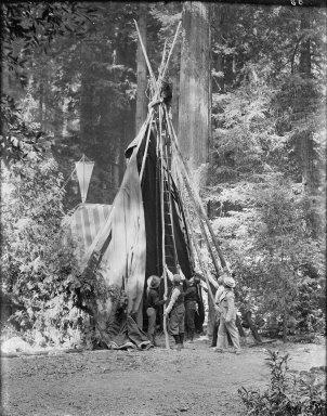 Men setting up tipi, Bohemian Grove. [negative]