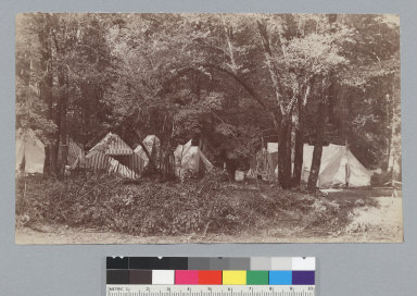 Camp with tents, Bohemian Grove. [photographic print]