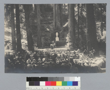 Open-air theatrical production, showing rear view of audience, Bohemian Grove. [photographic print]