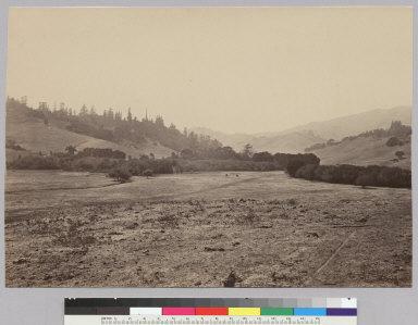 Maillard Ranch, San Geronimo [photographic print]