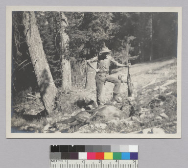 Hunter holding rifle, standing next to dead deer [photographic print]
