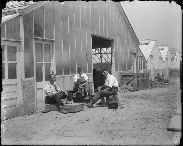 119717, [Three men eating outside greenhouse. Johan Hagemeyer, center?] [negative]